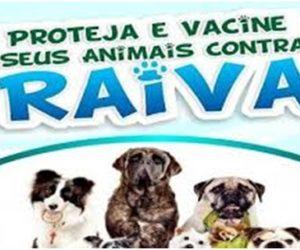 Campanha Municipal de Vacinação Antirrábica Animal Urbana e Rural Continua