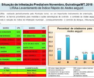 LIRAa: Levantamento Rápido do Aedes Aegypti